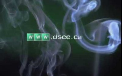 D See Video Spoof Logo
